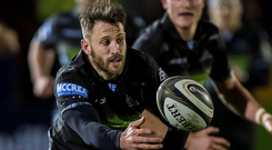 Familiar face: Tommy Seymour in action for Glasgow Warriors