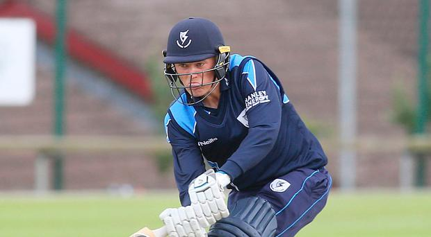 On strike: Jack Tector hit a brilliant 110 in Leinster Lightning's triumph