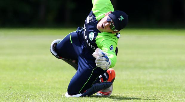 Having ball: Gary Wilson was in form with bat last night, hitting 66 not out