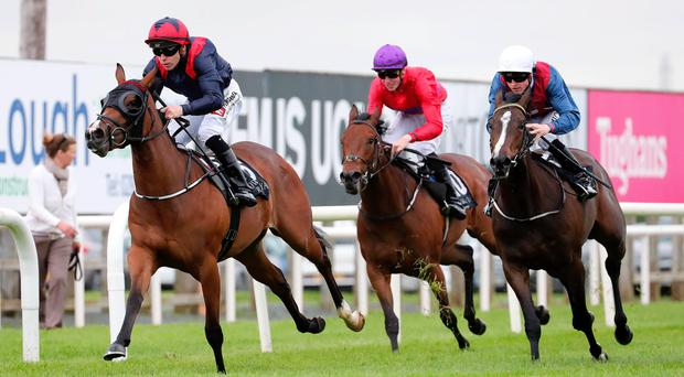 Home straight: Isabeau crosses the line first at Down Royal