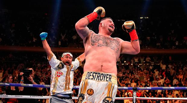 Golden moment: Andy Ruiz celebrates his stoppage victory