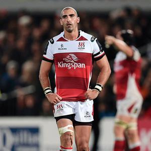 Hero's return: Ruan Pienaar is back at his family home in Belfast amid speculation of an Ulster coaching role