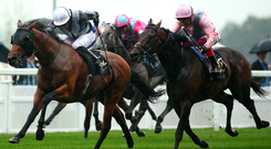 In front: Ryan Moore rides Circus Maximus to win The St James' Palace Stakes