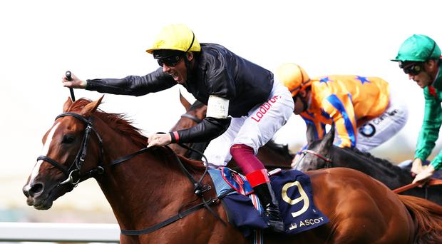 Golden boy: Stradivarius and Frankie Dettori are aiming to defend the Gold Cup at Royal Ascot