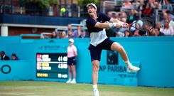 Forced off: Andy Murray during yesterday's doubles clash at Queen's Club which was suspended