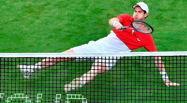 Court out: Andy Murray slips during doubles defeat at Eastbourne yesterday