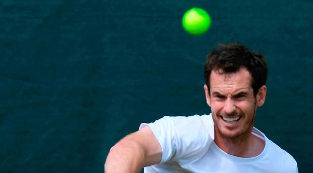 Teaming up: Andy Murray gears up for his mixed doubles bid with partner Serena Williams