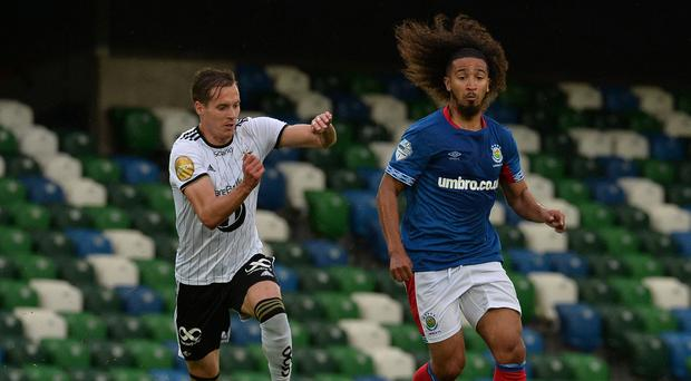 Linfield's new signing Bastien Hery.