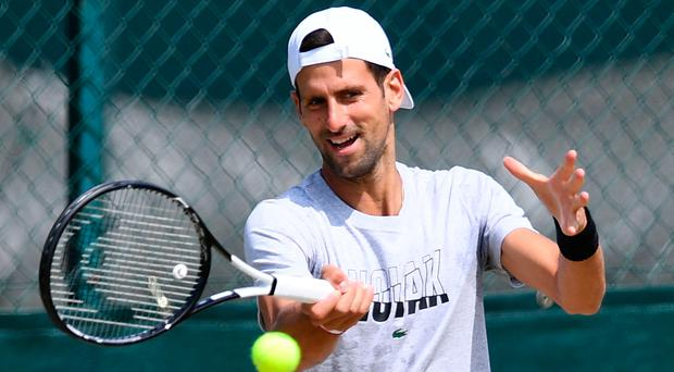 Familiar face: Novak Djokovic is eyeing a sixth SW19 final