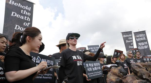 Kim Basinger speaks during a rally to oppose eating dog meat (Ahn Young-joon/AP)