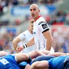 Familiar face: Ruan Pienaar is now with the Cheetahs