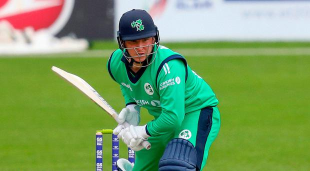 On strike: Gary Wilson insists Ireland won't just be making up the numbers in their Test duel with England