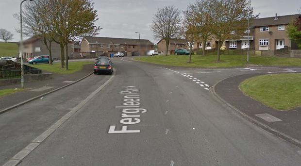 The attack happened in the Fergleen Park area of Londonderry. Credit: Google