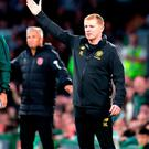 No panic: Neil Lennon is keeping a cool head