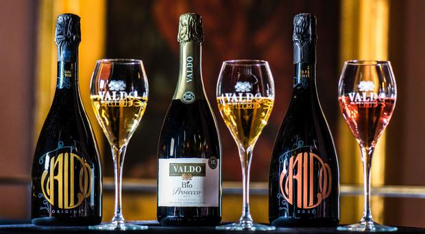 The Festival of Prosecco will present an array of events to celebrate one of the nation's favourite tipples.