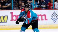 Consolation: Ben Lake scored the only goal for Belfast Giants last night