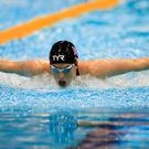 Bethany Firth at the World Para Swimming Chamionships in London