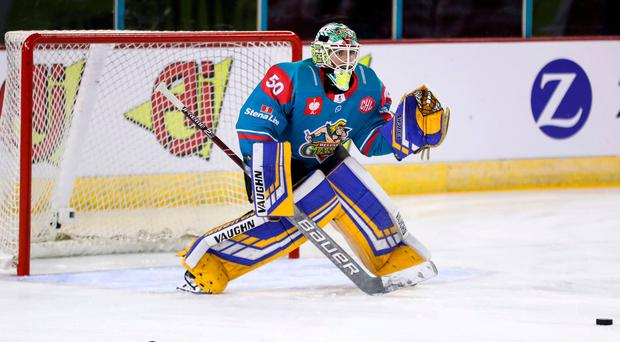 Familiar faces: Giants goalie Shane Owen will be taking on his old side the Fife Flyers twice this weekend