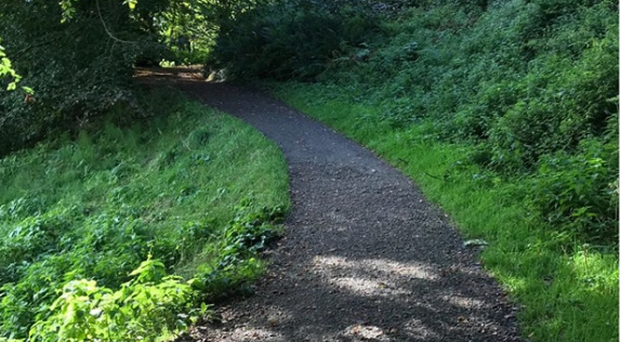 Police have called for information about an incident in Cavehill Country Park