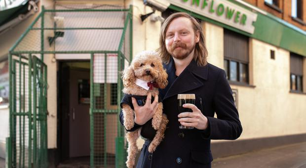 Satisfied customers: The Sunflower in Belfast is the most dog-friendly pub in Northern Ireland