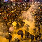 Protesters in Hong Kong shield themselves from tear gas with umbrellas