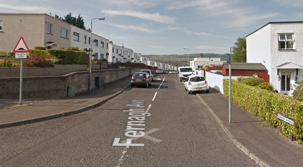 The incident took place in the Fernagh Avenue area. Credit: Google