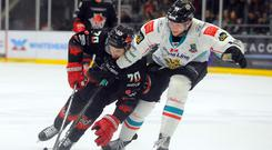 Curtis Leonard of the Belfast Giants and Charles Linglet of the Cardiff Devils battle for the puck in Sunday's game at the Viola Arena (Pic: Helen Brabon)