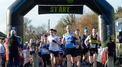 Belfast Telegraph Run Forest Run in Loughgall. Credit: Mervyn McKeown/My Sports Photo