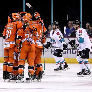 The Sheffield Steelers celebrate scoring in Saturday's 4-0 win over the Belfast Giants at the SSE Arena (William Cherry/Presseye)