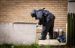 Police and ATO at the scene of a security alert in the Pinebank area of Craigavon on May 10th 2020 (Photo by Kevin Scott for Belfast Telegraph)