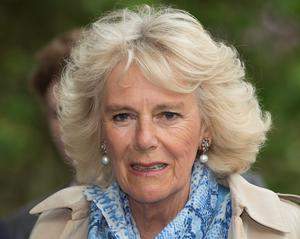 ANTRIM, NORTHERN IRELAND - MAY 22:  Camilla, Duchess of Cornwall visits Mount Stewart House and Garden on May 22, 2015 in Newtownards, Northern Ireland. Prince Charles, Prince of Wales and Camilla, Duchess of Cornwall visited Mount Stewart House and Gardens and Northern Ireland's oldest peace and reconciliation centre Corrymeela on the final day of their visit of Ireland.  (Photo by Eddie Mulholland - Pool/Getty Images)