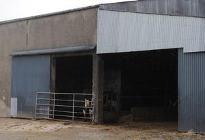The farm in which Harry Starrett (aged 6) from Armagh, was found dead by his grandfather in the milking parlour on the Ballynahonemore Road on Tuesday. Following a post-mortem on Wednesday morning, it has emerged that an underlying health condition was the cause. Photo by Pacemaker