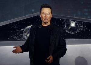 Tesla CEO Elon Musk has criticised the stay-at-home orders (Ringo H.W. Chiu/AP)