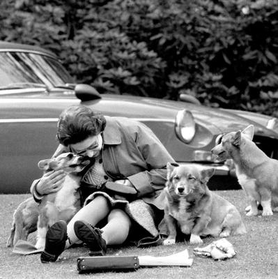 Queen Elizabeth II sitting with her corgis, at Virginia Water to watch competitors, including Prince Philip in the Marathon of the European Driving Championship, part of the Royal Windsor Horse Show PA Wire