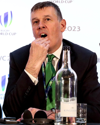 Big worry: IRFU chief Phillip Browne has outlined an £18m black hole