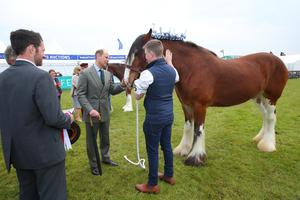 Prince Edward, Earl of Wessex is pictured at Balmoral Show meeting exhibitors. Photo by Kelvin Boyes / Press Eye.