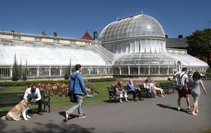 Press Eye - Weather Pictures - 7th May 2017 Photograph By Declan Roughan  Sunshine in Botanic Gardens.