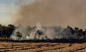 Firefighters battle a two day gorse fire on the Reenaderry road outside Dungannon on April 14th 2020 (Photo by Kevin Scott for Belfast Telegraph)