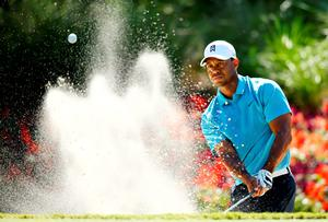 Tiger feat: Tiger Woods plays from a bunker at the 14th in his second round at the Players Championship at Sawgrass