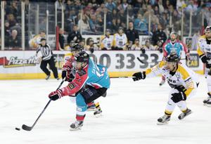 Belfast Giants' Steve Saviano with Nottingham Panthers' Logan MacMillan during Fridays Elite Hockey League game at the SSE Arena, Belfast. 20  January 2017 - Picture by Darren Kidd / Press Eye.