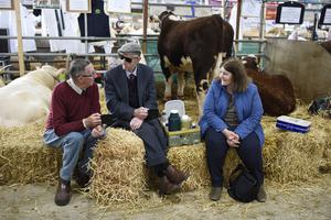 15/5/19: Competitors enjoy a cup of tea during a break in the cattle judging at the Balmoral Show. Picture: Michael Cooper