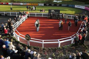Northern Ireland Festival of Racing at Down Royal Racecourse - Day 1  General view of parade ring  Picture by Kelvin Boyes / Press Eye.