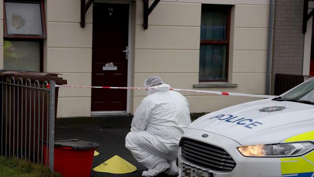 Police at the scene of a petrol bomb attack in Brookfield Gardens, Ahoghill following a petrol bomb attack.