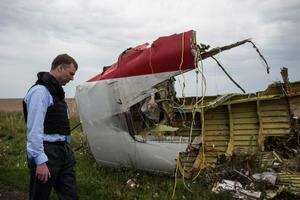 Alexander Hug, deputy head of the OSCE mission, looks at debris at the crash site of a Malaysia Airlines jet near the village of Hrabove, eastern Ukraine, Friday, July 18, 2014. Representatives from the Organization for Security and Cooperation in Europe and four Ukrainian experts had traveled into rebel-controlled areas to begin an investigation into the attack that killed 298 people from nearly a dozen nations.  The militia allowed them to look at part of the crash site, but refused to let them view the area where the engines came down. (AP Photo/Evgeniy Maloletka)