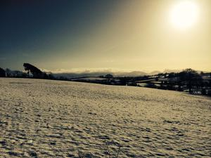 The rural beauty of Annaclone, Co Down this morning. Pic: Paula McNeill (29/01/2015)