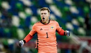 Bailey Peacock-Farrell in action for Northern Ireland (Kevin Scott/Belfast Telegraph)