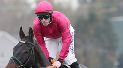 Horse for course: Delta Work, with Davy Russell on board, wins at Down Royal in 2018