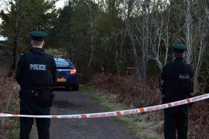 Police at the scene of a serious incident at Peatlands Park, Dungannon. Photo: Mark Winter / Pacemaker Press