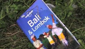 This image taken from video, Thursday July 17, 2014, shows a guidebook found in the wreckage of a passenger plane after it was shot down Thursday as it flew over Ukraine, near the village of Hrabove, in eastern Ukraine. Malaysia Airlines tweeted that it lost contact with one of its flights as it was traveling from Amsterdam to Kuala Lumpur over Ukrainian airspace. (AP Photo/Channel 1)