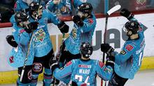 Belfast Giants forward Elgin Pearce celebrates scoring against the Cardiff Devils during Saturday night's game at the SSE Arena (William Cherry/Presseye)